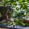 Изобретение солёных огурцов