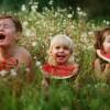 Некоторые выводы после рождения троих детей