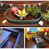 Журнальный столик с мини-садом своими руками