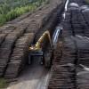 Русской дубиной по финской промышленности