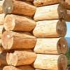 Какой материал лучше для строительства дачного дома: бревно или брус