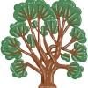Эволюционное дерево языков